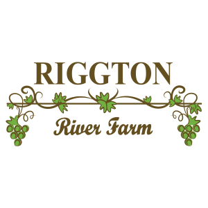 Riggon Logo without tents